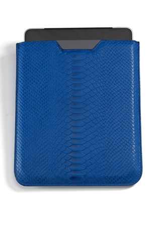 Graphic Image Ipad Sleeve in Blue
